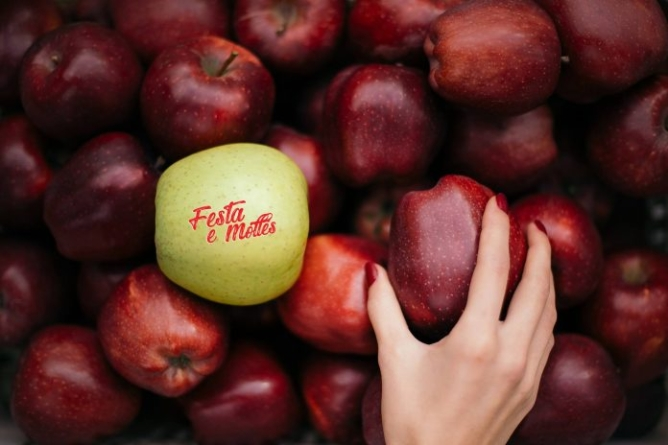"""""""Apple Feast"""" in Korça, promoting local products and promoting tourism"""