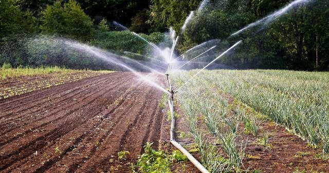 About 17 thousand hectares of land enter the irrigation system