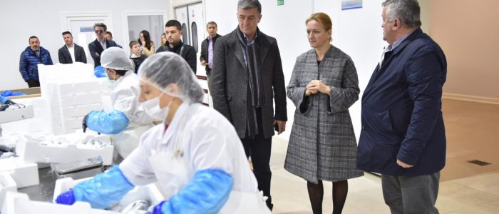 Minister Denaj: We support Albanian exports to EU markets