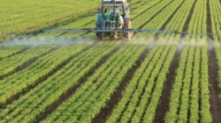 How is the regulation of VAT on inputs and agricultural machinery realized?